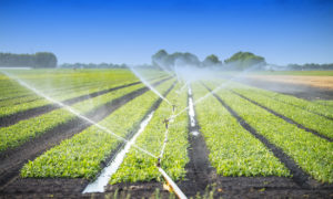irrigation services in arizona southwest irrigation